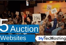 auction sites