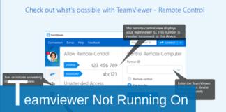 teamviewer not running on partner computer